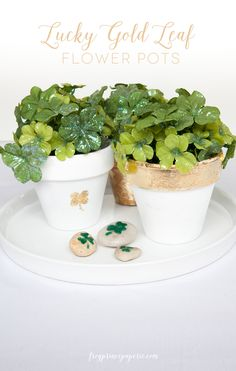 A tutorial on how to gold leaf flower pots that are just perfect for St. Patrick's Day centerpieces!