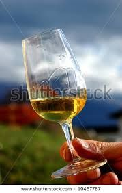 Google Image Result for http://image.shutterstock.com/display_pic_with_logo/255850/255850,1224952673,6/stock-photo-a-glass-of-white-wine-held-outside-the-cellar-where-it-was-made-with-a-background-of-vinyards-19467787.jpg