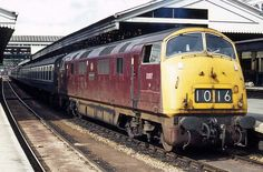'Warship' diesel hydraulic No. 'Foxhound' waits to depart from Exeter St Davids on May 1971 with a service for London Waterloo. New from Swindon Works in March it was withdrawn from Newton Abbot in October 1971 and cut-up at it's birthplace during March Electric Locomotive, Diesel Locomotive, Uk Rail, South Devon, Train Art, Electric Train, British Rail, Train Pictures, Train Engines