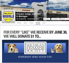 Check out how you can help the Michigan Humane Society.