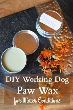 DiY paw wax keeps the ice from forming on the bottom of your dog's paws and protects the dog's paw from winter injury's resulting from cold and dryness. paw DIY Calendula Dog Paw Wax for Winter Conditions Oils For Dogs, Homemade Dog, Homemade Facials, Homemade Beauty, Diy Stuffed Animals, Working Dogs, Dog Paws, Pet Health, Dog Grooming