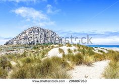 Cayucos Stock Photos, Images, & Pictures | Shutterstock
