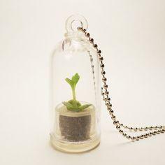 Real Living Tiny Texas Windowsill Cactus Plant Necklace