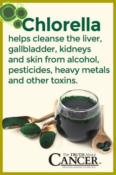 Chlorella is a fantastic detox agent! It helps cleanse the liver, gallbladder, kidneys and skin from alcohol, pesticides, heavy metals and other toxins. How to use chlorella? Click on the image above to learn how! Please pin to save for later! Join us for much more great information on The Truth About Cancer!