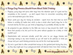 5 Things Dog Owners Should Know About Toilet Training