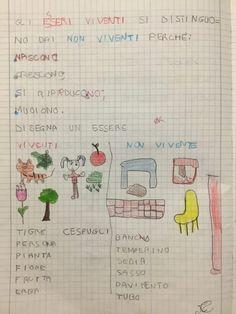Viventi e non viventi Science, School, Blog, Maths, Environment, Tecnologia, Musica, Blogging