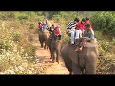 Elephants' Ride in Sangkhlaburi, Thailand