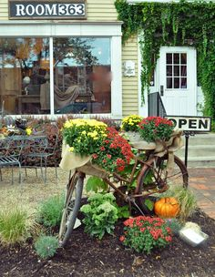 a vintage bicycle as a planter