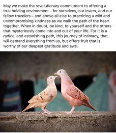 Words from the wonderful Matt Licata a teacher I'll be visiting in California next week http://ift.tt/2gc6lHE