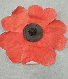 Posting these a little late for Remembrance Day (Nov 11th here in Canada), so sorry about that! Maybe use this idea for next year?! ...