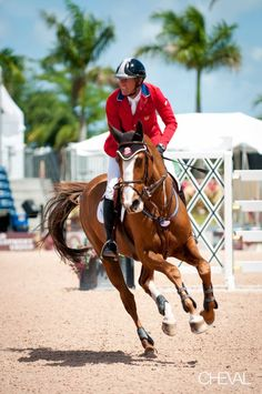 breyer flexible horse | Flexible and Rich Fellers #Breyer #BreyerModelHorses Available on ...