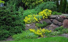 Tapety na pulpit 4K, Ultra HD, FULL HD i inne rozdzielczości: Ogród skalny rock garden