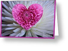 Pink Heart On White Greeting Card by Joan-Violet Stretch
