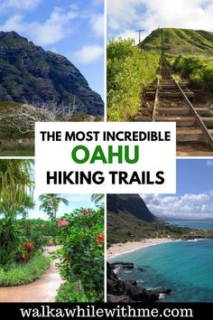 Thinking to travel Hawaii, and wondering what things to do in Oahu? Well, after checking out the Oahu beaches, I recommend adding some hikes to your Oahu itinerary! To learn more, read my article on the best Oahu hikes | Oahu hikes waterfall | Oahu hikes trails | Oahu hikes North Shore | easy Oahu hikes | top Oahu hikes | Oahu hikes Hawaii | hikes Oahu pillbox | hikes Oahu Kokohead | hikes Oahu pink pillbox | hikes Oahu Diamond Head | easy hikes Oahu | Oahu travel | Oahu Hawaii activities | Hawaii Hikes, Oahu Hawaii, Us Travel Destinations, Places To Travel, Travel Guides, Travel Tips, Hawaii Activities, Oahu Beaches, Usa Places To Visit