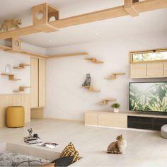 Cat Tree House, Cat House Diy, Animal Room, Cat Climbing Wall, Cat Wall Furniture, Cat Wall Shelves, Cat Hotel, Diy Cat Tree, Cat Towers