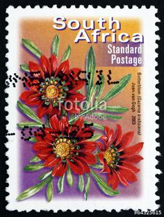 Postage stamp South Africa 2003 Botterblom, Flowering Plant - Buy this stock photo and explore similar images at Adobe Stock