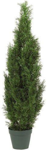 4' Cedar Tree Silk Tree (In-door/Out-door)