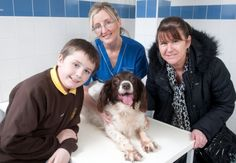 A dog from Croftfoot, Glasgow, is recovering well after a life-saving operation at Glasgow (Shamrock Street) PDSA PetAid hospital to remove bladder stones.