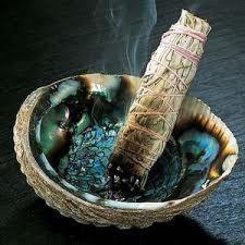 abalone ou coquillage d'ormeau servant à la combustion des plantes sacrées