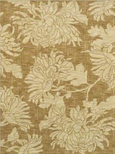 Explore Shaw Floors Carpet in the latest colors, patterns and trends. Mums The Word, Latest Colour, Cool Rooms, Kitchen And Bath, Hgtv, Area Rugs, Carpet, Tapestry, Flooring