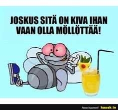 Joskus sita on kiva ihan. Some Fun, Live Life, Finland, Funny Animals, Inspirational Quotes, Positivity, Sayings, Memes, Life Coach Quotes