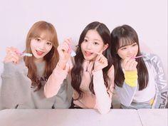 [IZ*ONE VLIVE] 180921 [✌️] Here it is, mint choco team!💚🍫 (Let us) reveal the mint choco team🙌 Yuri, 3 In One, One Pic, Honda, Eyes On Me, Choi Yoojung, Sakura Miyawaki, Survival, Japanese Girl Group