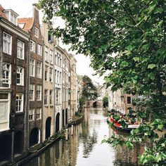 Summer in Amsterdam, The Netherlands
