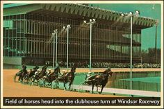 A website devoted to the history and nostalgic side of the sport of Harness Racing,primarily Canadian . Windsor Ontario, Harness Racing, The Good Old Days, Garden Tools, Canada, History, Places, Kids, Horse