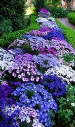 Love this flowerbed.  Definitely, something I would copy.