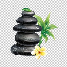 This PNG image was uploaded on January pm by user: jisaghn and is about Alternative Medicine, Day Spa, Desktop Wallpaper, Facial, Flowerpot. Spa Spa, Latest Colour, Alternative Medicine, Color Trends, Flower Pots, Massage, Desktop, Space, Wallpaper