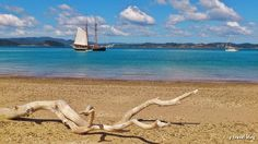 Bay of Islands, New Zealand - Learn about 15 things to do in New Zealand at the blog link: www.ytravelblog.c... #travel