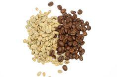 Fact Sheet: Green Coffee Bean