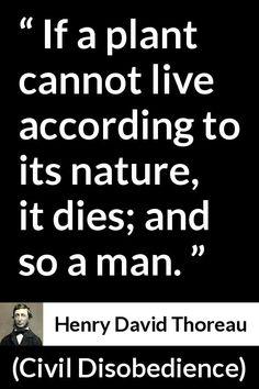 100 Henry David Thoreau Ideas Henry David Thoreau Thoreau Quotes Thoreau