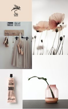 mood board, delicate, blush, colour, pale pink, muuto, aesop, ballet, soft, natural, fragrance, poppies, nude, trends, graphic design, logo