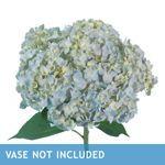 Costco Whole Sale Flowers. Wedding Flowers, Whole Sale Flowers