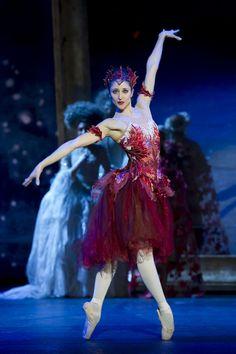 "Angela Paul as Autumn in ""Cinderella"" (Birmingham Royal Ballet). Photo: Bill Cooper - Costumes by John McFarlane Royal Ballet, Ballet Real, Tutu Ballet, Ballet Dancers, Ballerinas, Bolshoi Ballet, Ballerina Art, Theatre Costumes, Tutu Costumes"
