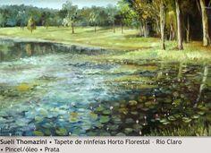 Tapete de ninfeias Horto - Sueli Thomazini - 2000. Imagem do acervo do APHRC
