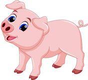 Cute chef pig cartoon Royalty Free Stock Photo