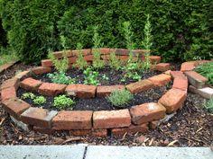 brick planter, brick garden bed, herb garden, rosemary
