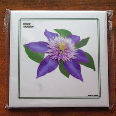 Clematis tile, trivet, IN STOCK, ready to ship, ceramic floral tile,  blue violet flower, color photography, blossom, garden photography by RVJamesDesigns on Etsy