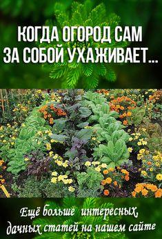Garden Art, Public Garden Design, Garden Planning, Garden Design, Garden, Small Farm, Plants, Gardening Tips, Vegetable Garden