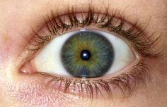 fuck yeah, heterochromia.