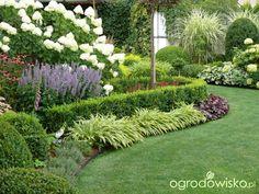 Ogród mały, ale pojemny;) - strona 135 - Forum ogrodnicze - Ogrodowisko