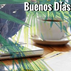 Buenos días / fotografía / Instagram : una #mañaña muy tropical para este #lunes y con un buen #cafe . #felizlunes #badebaño