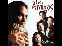 Agitando pañuelos - Sergio Galleguillo y Los Amigos - YouTube