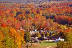 Autumn in Crystal Mountain---Hope it looks like this next year for our wedding! @Zachary Gober