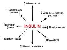 insulin-effects