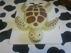 Turtle cake , wish I had a better picture of it!