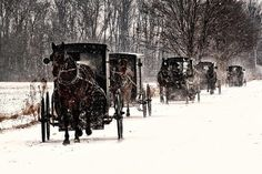 Amish - Not sure if this is PA or not, may be Ohio, but certainly a scene you would see on our country roads in winter.