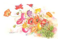 ポピーの花水彩画イラスト 表情豊かな色とりどりのポピー水彩画イラスト